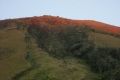 gunung-inierie-slope