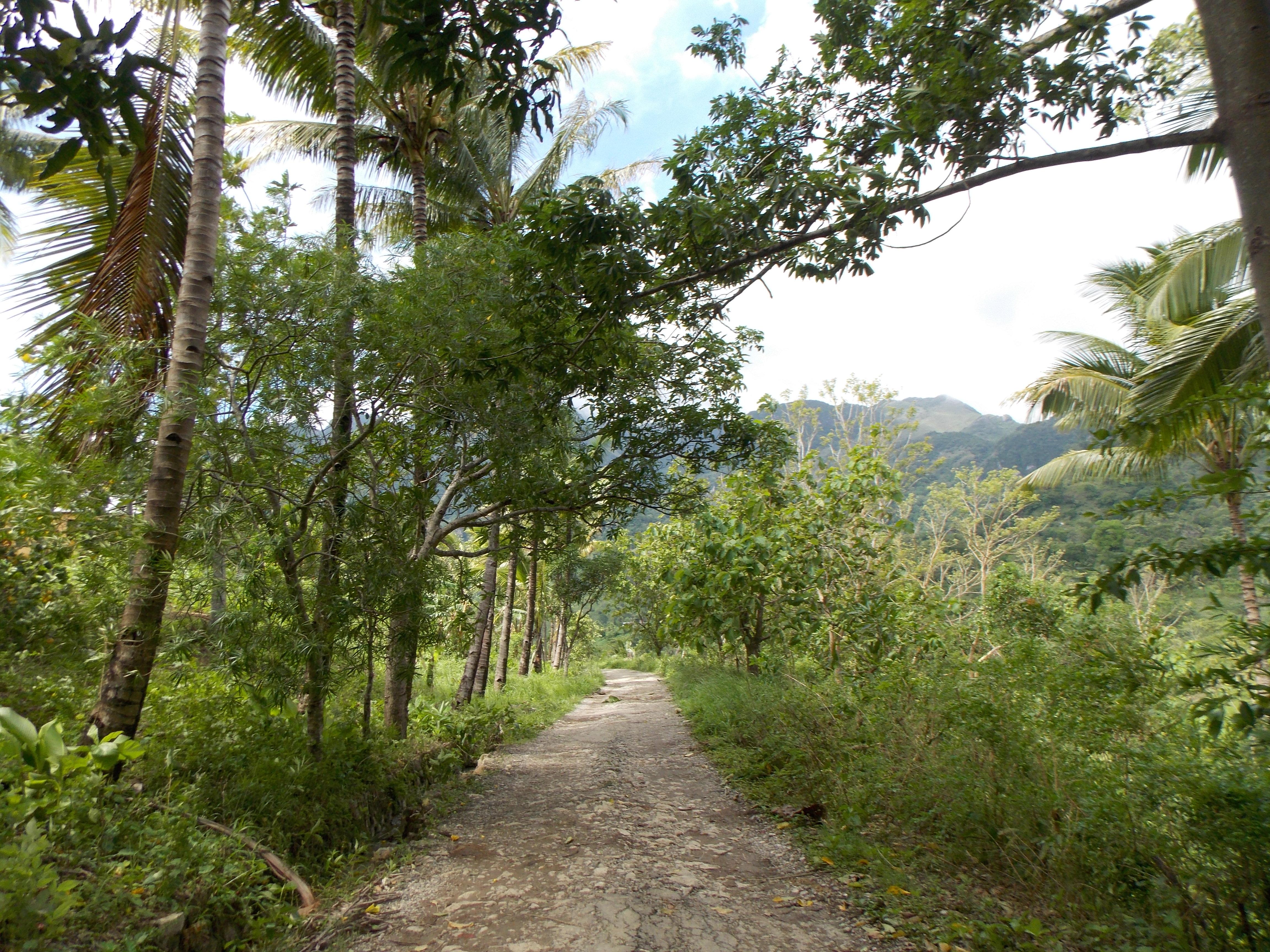 east-timor-068