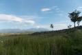 east-timor-124