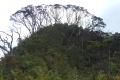 ranau-seminung-pesagi-155