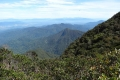 12 A view down from summit of gunung Korbu