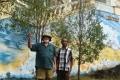 Sandal wood trees, Bacau (Nicholas Hughes, July 2018)